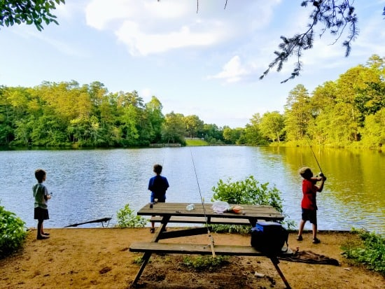15 awesome places to fish near greenville for Nearby fishing places
