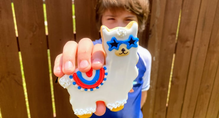 Llama Cookie for Independence Day